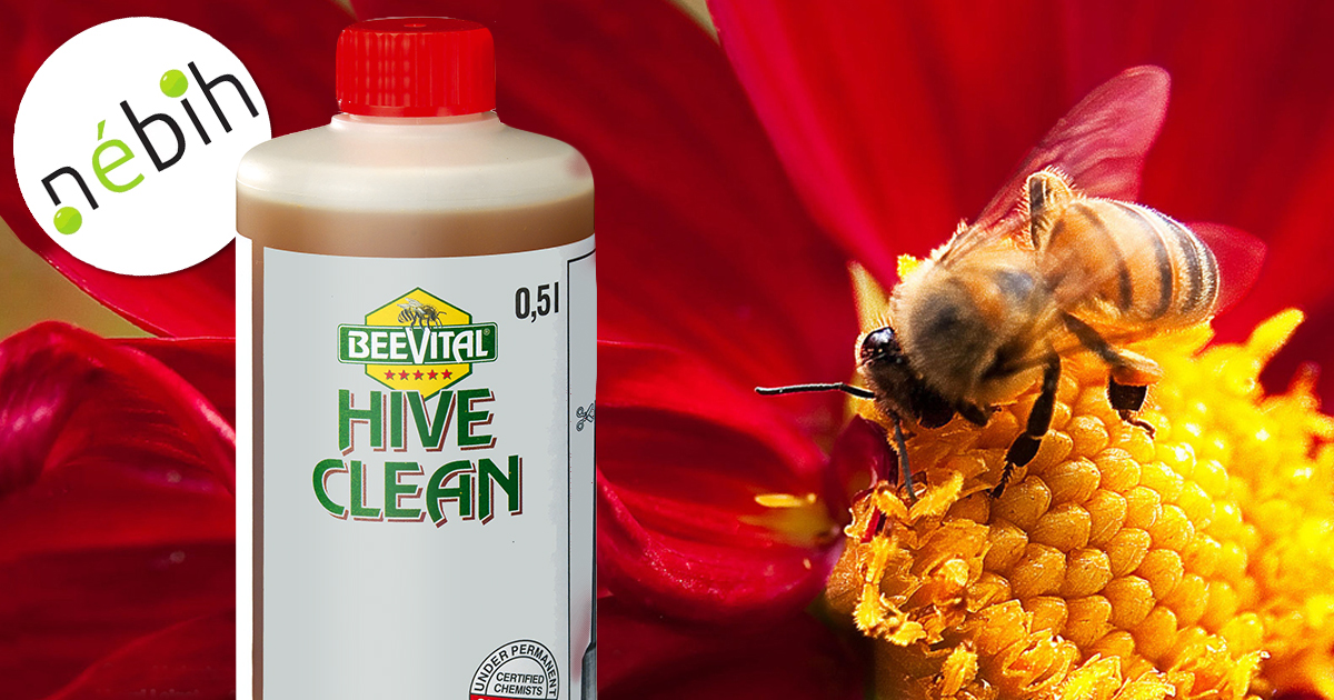 hivecleanUJ